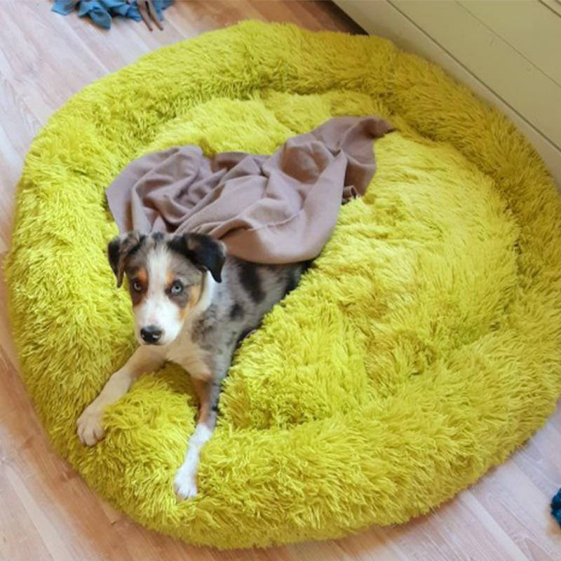 كلب طويل القطيفة Dounts سرير سلة تهدئة سرير Hondenmand الحيوانات الأليفة بيت الكلب لينة منفوش مريح لمتوسط الكلاب الصغيرة الكبيرة
