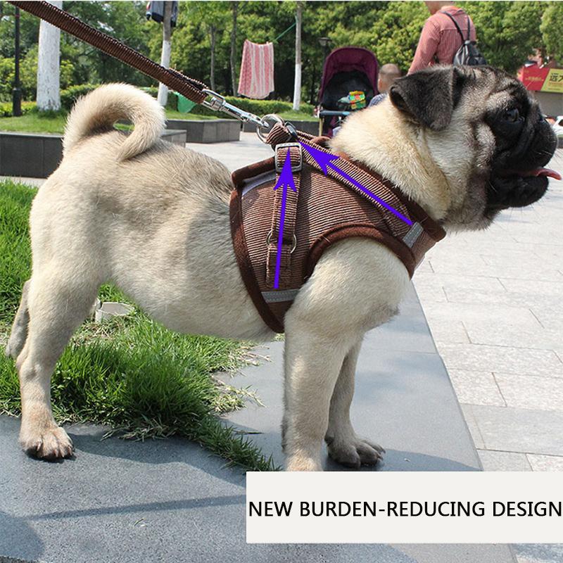 Новые одежды любимчика собаки легкий дышащий жилет типа собака тяговый канат отражающий тяговое принадлежности ремень животное дизайнер пальто