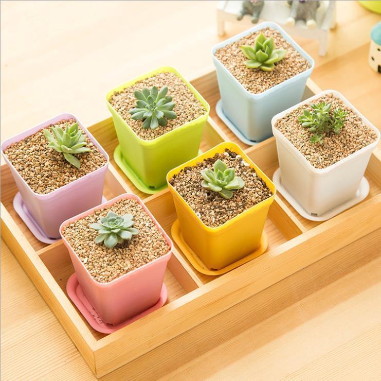 مصغرة مربع من البلاستيك وعاء النبات مكتب ديكور المنزل الغراس مع الأواني صواني النبات الاصطناعي الأخضر 10 الألوان