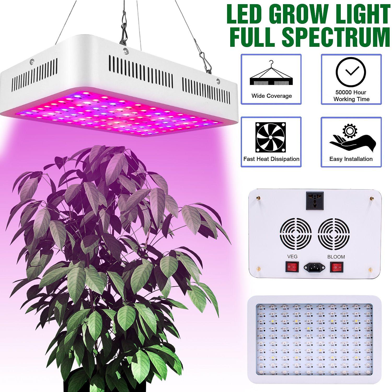 Azioni USA Led Grow Grow Light 600W Dual Chips Full Light Spectrum Plant Plant Lampada per la lampada per la pianta della serra Grow Tenda lampada