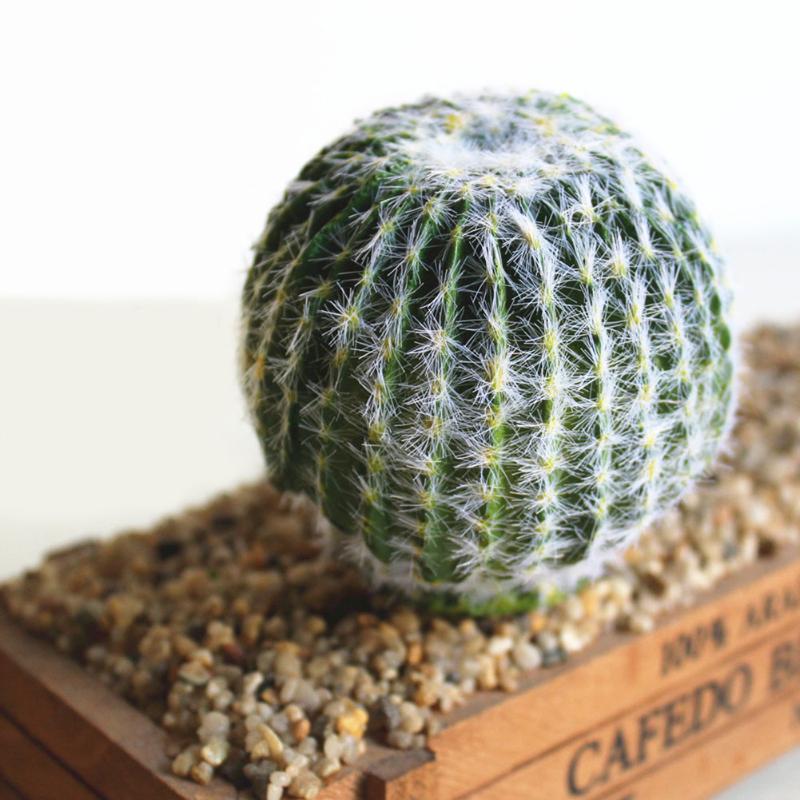 DIY Peyzaj Canlı Çöl Yatak Odası Farklı Ev Simülasyon Succulents Dikenli Armut Bahçe Sahte Kaktüs Yapay Bitkiler Ofisi