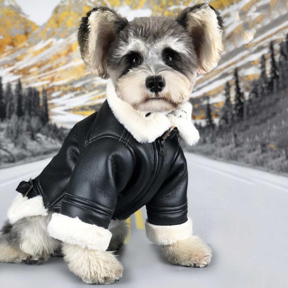 개 겨울을위한 패션 블랙 가죽 자켓 겨울 두꺼운 따뜻한 애완 동물 겉옷 테디 슈나우저 불독 강아지 코트 옷