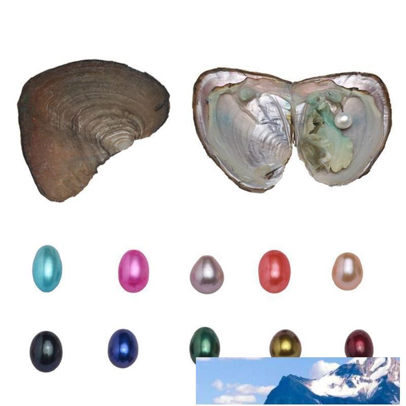 Naturale sola perla Ostriche con triplette Perle perline 10 Significativo colori perla per il regalo di compleanno Pearl Party (6-8mm, 3pcs / Ostriche)
