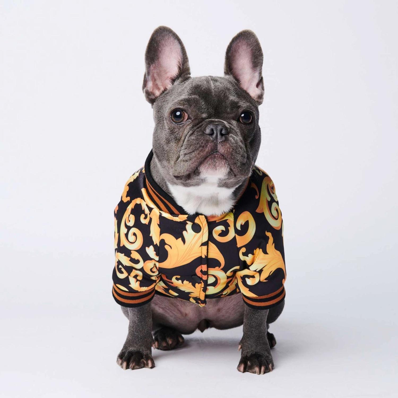 Coleiras espessa camada quente de luxo Além disso Brasão Outono E Inverno Ano Novo Teddy Lei Bucket Corgi acolchoado animal de estimação roupas para cachorros Jacket