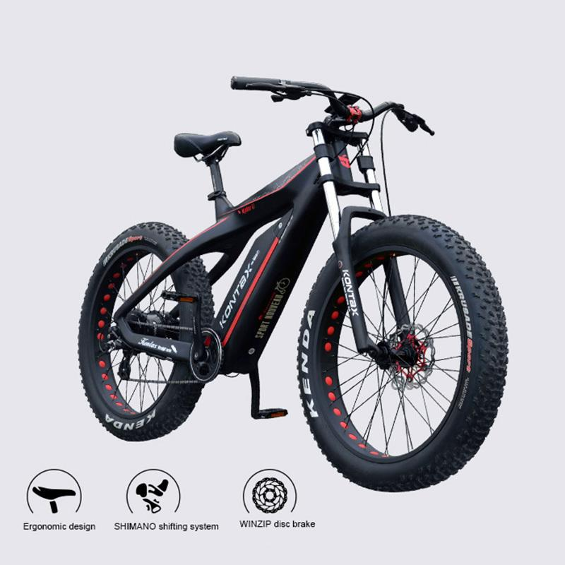 Custom Carbon Fiber Electric Snow Bike 26Inch Vet Ebike 48V750W Bafang Engine Super Light Weight Male Female Bike