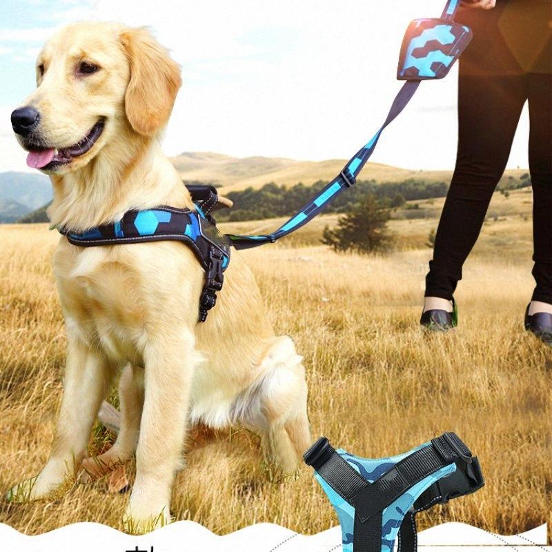 Perro de tracción de cuerda, cadena del perro, cuerda, pequeña, mediana y grande de pelo de oro, fácil de caminar con Snack Pack 3jkf #