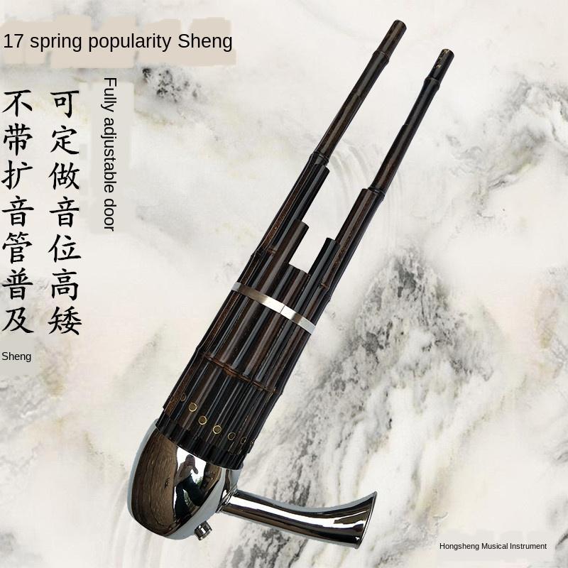 17 Bahar Cegd Ayarlama Ulusal Müzik Aletleri Sheng Profesyonel Yetişkin Çocuk Acemi