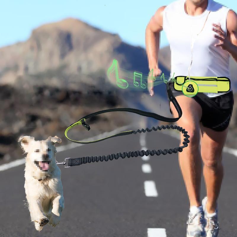 Leash mãos Dog gratuito Reflective Pet Elastic Belt Cão Running Set Leash nylon Coleira Acessórios Puppy Dog Harness Leash