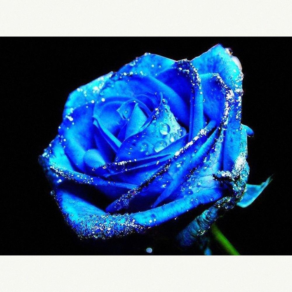 Cross Stitch Kit DIY diamante bordado Blue rose completa Square / diamante redondo Pintura Mosaic Home Decor MkBf #