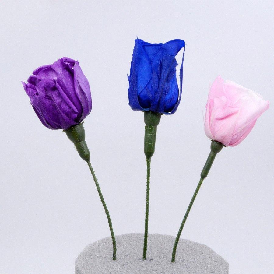Пластиковые Стебель Отделение Rose Палка с Calyx Используется для сухих цветов Сохранилось розы Искусственные цветы DIY подарков Дизайн Home Decor Rose Q4eK #