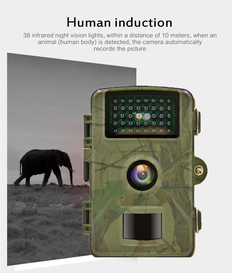 Hunting Camera 12MP Photo Trap Night Vision 1080P Scout Trail Wildlife Camcorder