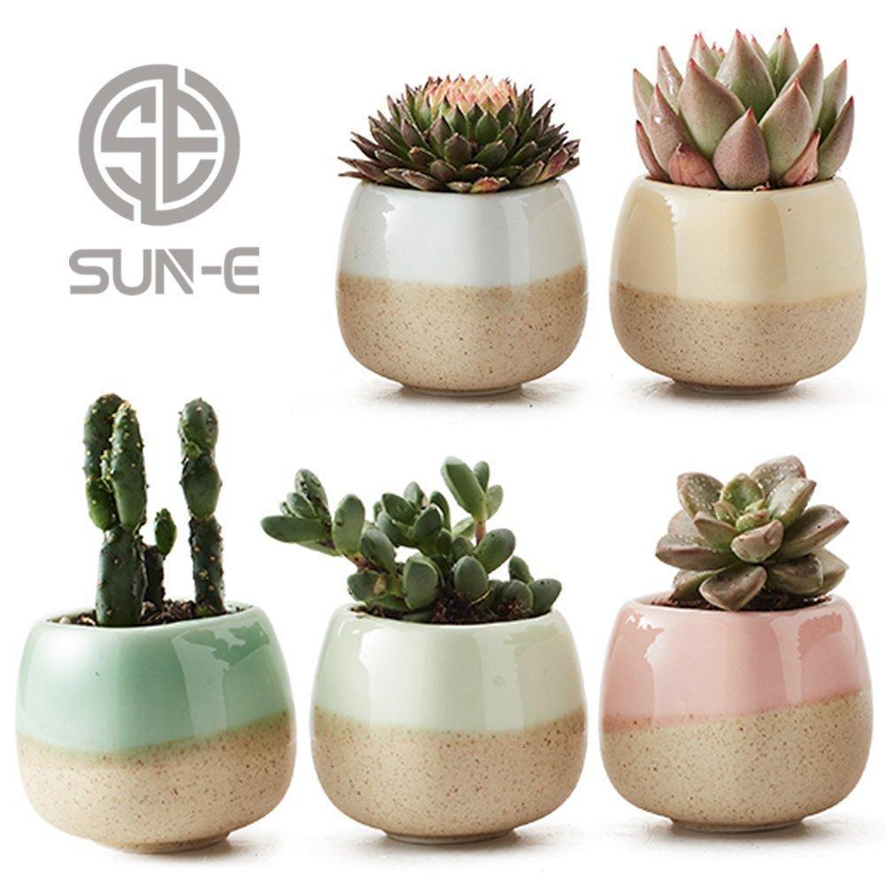 5 Set içinde 2,2 inç Konteyner Planter Seramik Akan Sır Beş Renk Bankası Dizi Seti Sulu Bitki Pot Cactus Çiçek Hediye Y200723