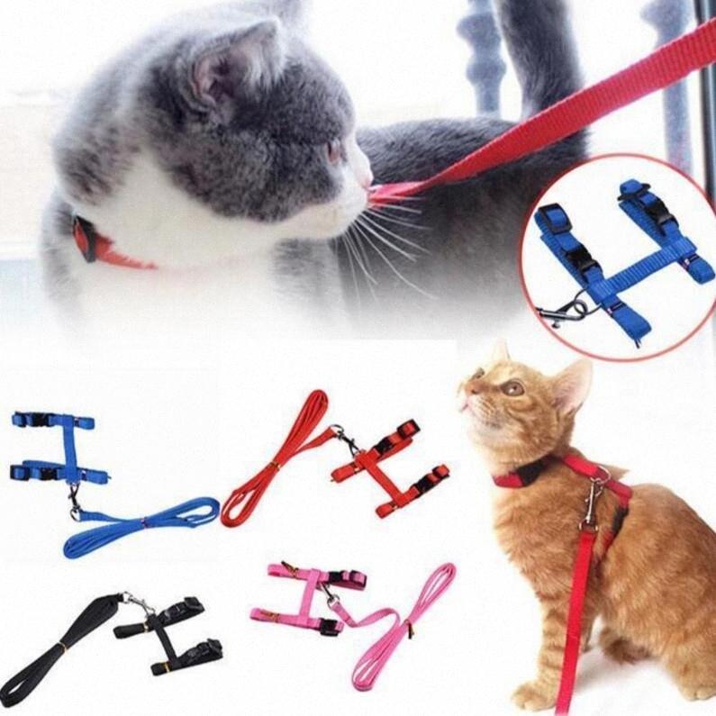 5 couleurs Harnais Pet Dog Leash Collier de chat sangle et Puppy réglable Harnais de traction EEA330 120pcs 9m96 #