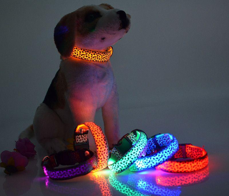 2016 Collar LED NOVO intermitente Dog Com diffent Cores Flexão Nylon Collar ajustar o tamanho Pet Shop