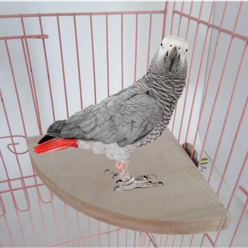 3 Größen Vogel Rack-Hamster Zweig Vogel Holz Perches für Haustier-Spielzeug-Plattform stehen Cage Parrot Supplies Spielzeug