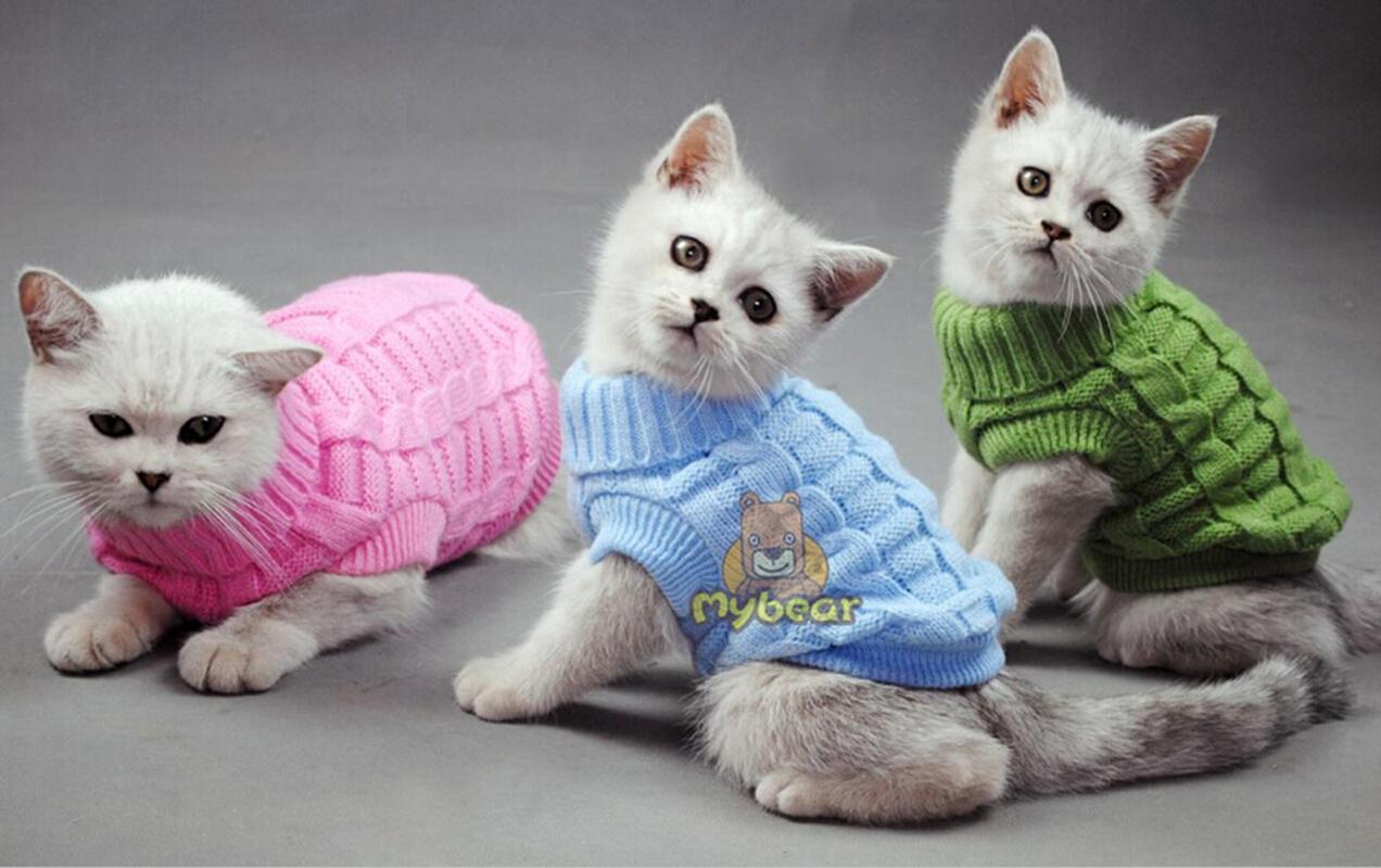NEW Собака Кошка свитер Sphinx Cat пальто Spagetti теплой осенью Зима Pet Jumper одежду для маленькой собаки Домашних животных