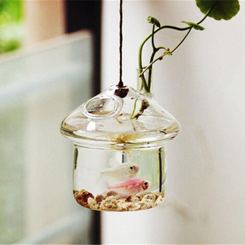 Hongo en forma de colgantes de cristal Jarrón Maceta Rumble Fish Tank terrario de contenedores Inicio decoración de jardín