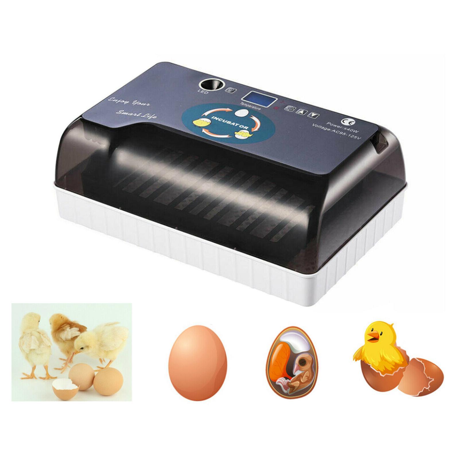 12 uova Incubatrice automatica Farm Digital Anatra Pollo Hatcher Accensione della lampada LED