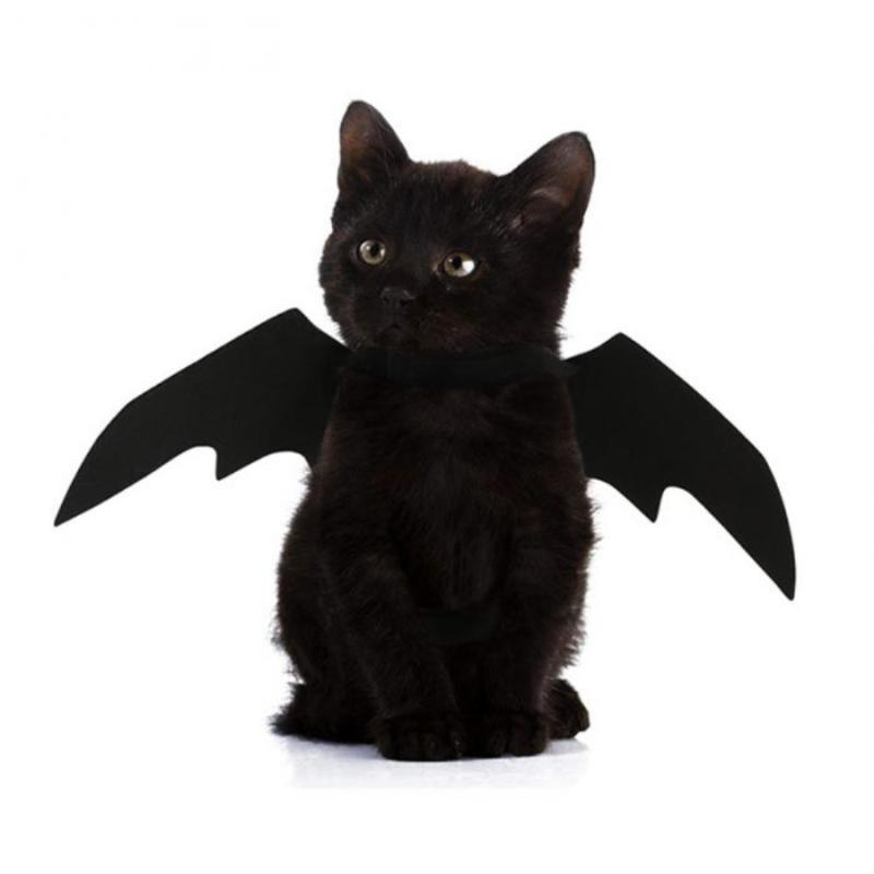2020 El traje mascotas vestido de perro Nueva OLN Bat gato Ala Cosplay Prop palo de Halloween traje de fantasía gato accesorios de fotos, gorros