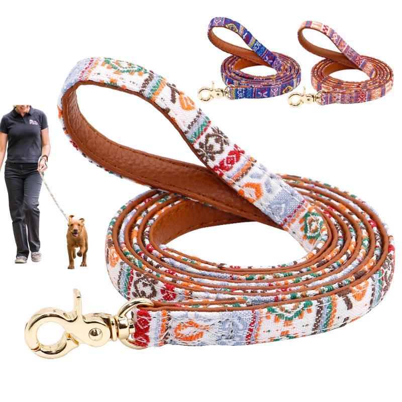 Collari per cani Guinzaglia 4ft Pet Guinzaglio Cucciolo di Guinzaglio Cats Walking Lead Rope Pelle imbottita per cani piccoli mediocre con manico morbido