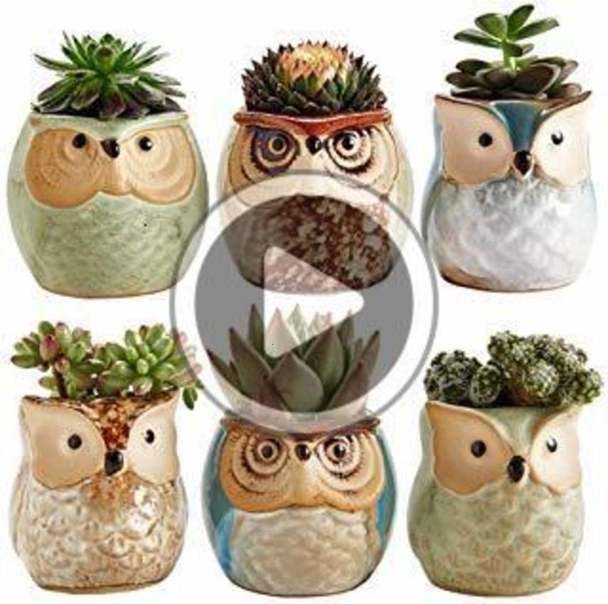 Baykuş Pot Sır ase Sulu Bitki Pot Cactus Çiçek Konteyner Dikim onsai Saksılar zekâ Bir ole Mükemmel Amy Akan Ramiç