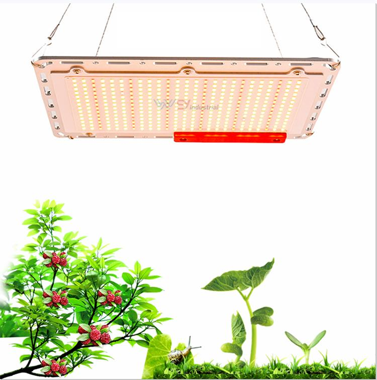 2020 New Design WY cheap price full spectrum LM301B/501C Sumsung Chip 120W 240W Led Grow Light Hydroponic LED growth light kits