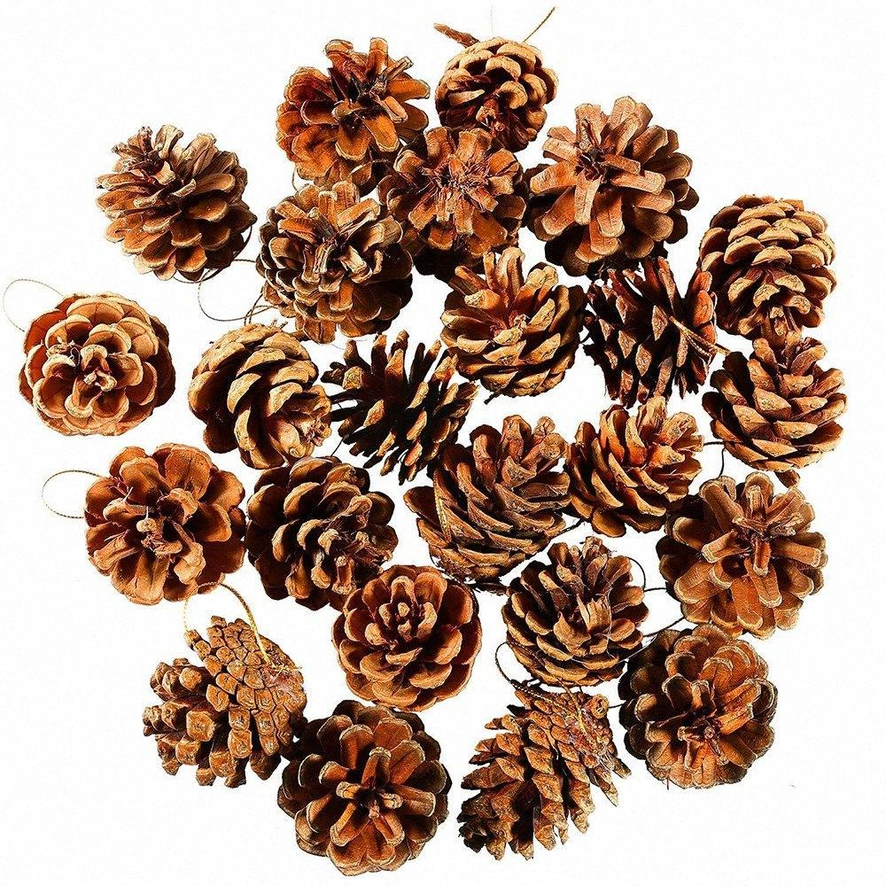 24 pcs Decorative Pinecone Pine Cones Pinecone For new year Christmas Tree Toppers Vase Bowl Filler Displays Crafts Home Decor tASH#