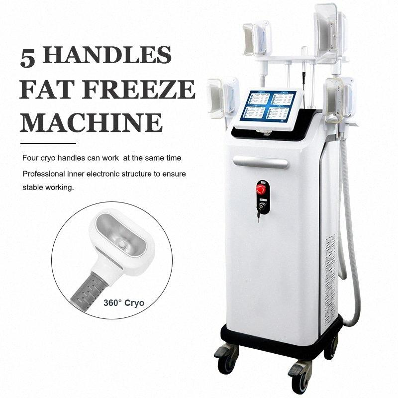 2019 Cryo-Maschine Freeze-Fat Körper Cellulite Removal Cryolipolysis Kühle Shaping-Therapie 4 Griffe gleichzeitig arbeiten Spa Abnehmen Equi Gk2g #
