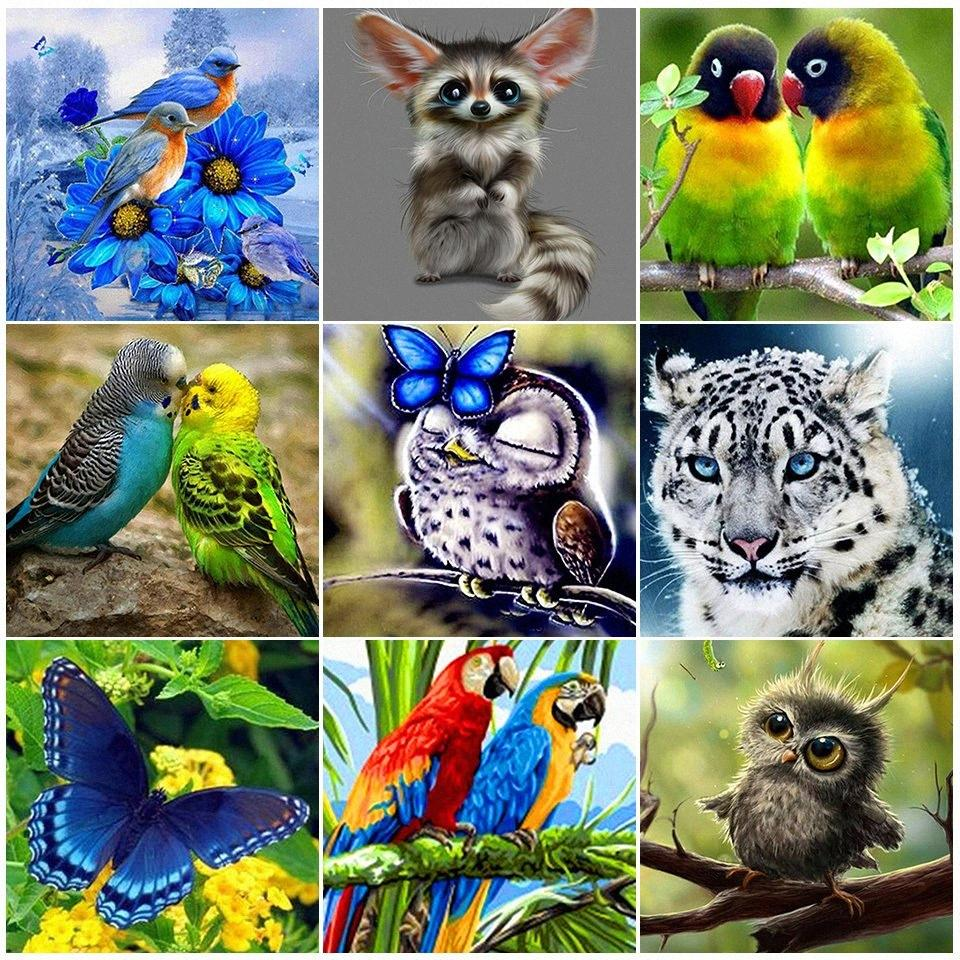 Diamante pintura animal dos desenhos animados da coruja Papagaio Pássaro 5D DIY diamante Bordados Set Cruz Mosaic Rhinestone ponto Home Decor Venda lHnk #