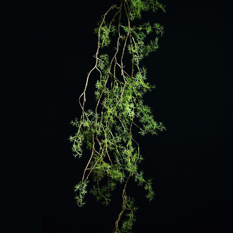 plantas artificiais grama verde videiras plástico pendurado parede das folhas ramos folhas verdes parede de decoração de casamento em casa por volta preto