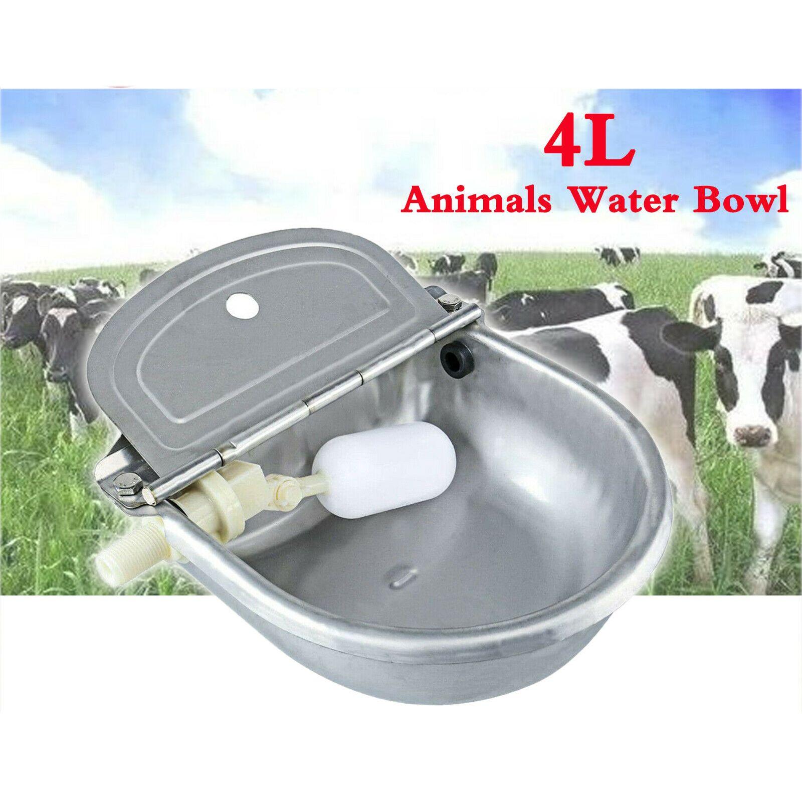 4L acqua dell'acciaio inossidabile Trough Bowl Cavalli Capre Sheep Pig Float Bowl Waterer automatico bere Bovini Bowl Accessori Strumenti