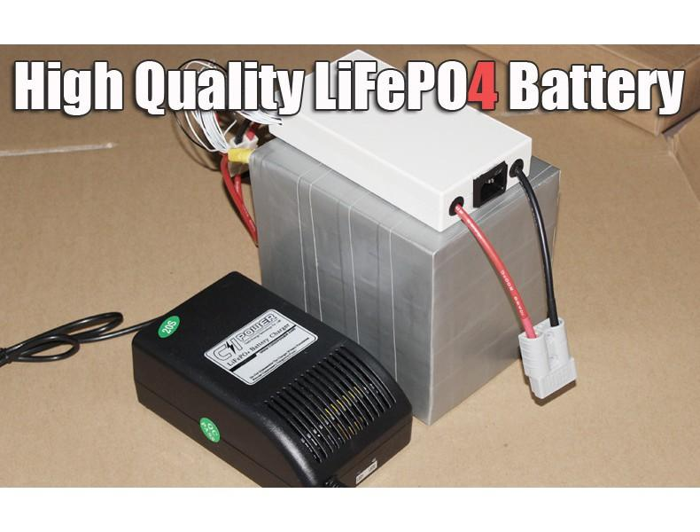 36V 26Ah LiFePO4 Battery Pack, 1000W bicicletta elettrica + 1000W BMS Caricabatterie