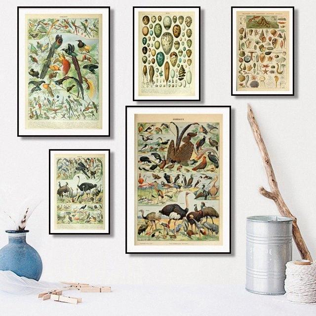 Personalizzabile piante, animali e funghi, Ocean Mappa di alta qualità impermeabile inchiostro Unframed della tela pittura di alta qualità Home Decor vXvg #