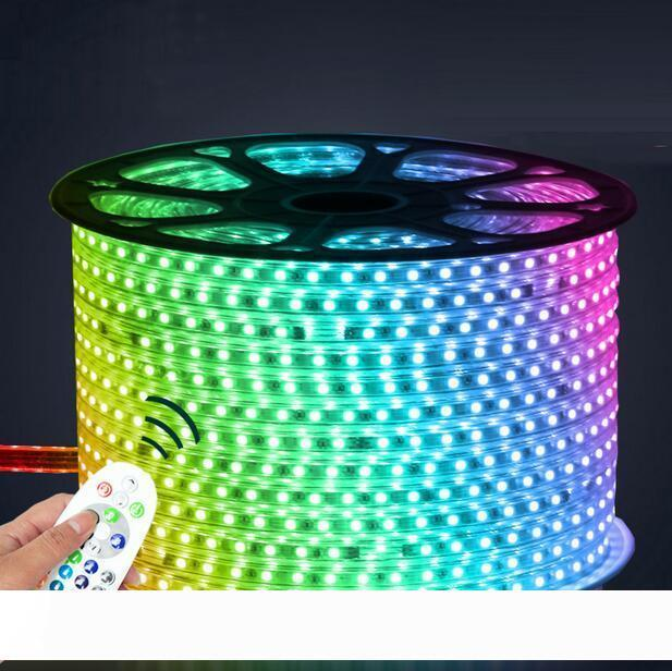 110V 220V LED Strip 5050 50m 100m IP67 Waterproof RGB Dual Color Rope lighting for outdoor with RF Remote controller by DHL