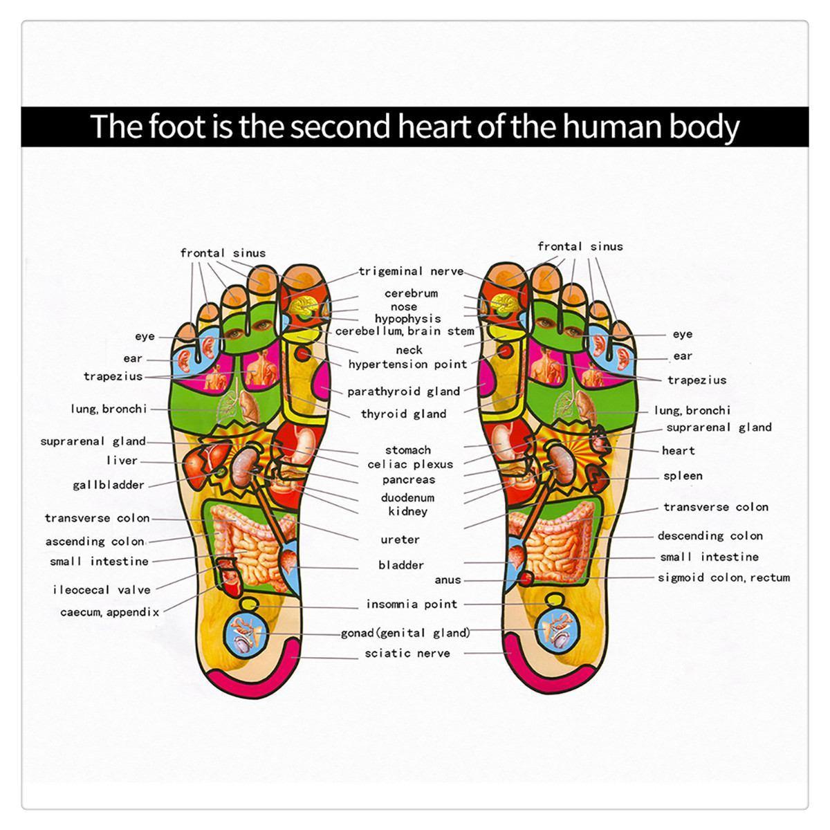 Elektrische Fußmassage Mat AkupunkturMassager Füße entspannen Maschine Schönheits-Fuss-Vibrator Muskeltraining Physiotherapie Faltbare