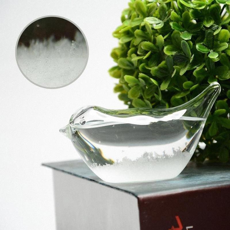 Criativo Cristal Previsão Garrafa Pássaro de Apple Mini Vidro Tempestade Garrafa Decoração Acessórios Modern uCCK #