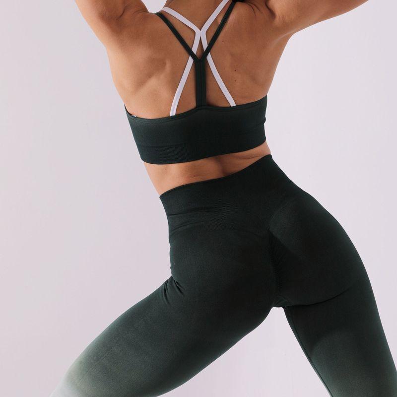 qualityseamless degrade YOGA setleri tayt sutyen İç yoga takım kadınlar jimnastik spor spor sutyen yüksek bel spor pantolon takım elbise