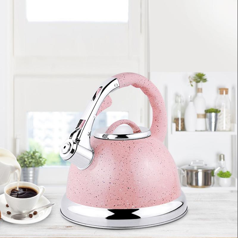 chaleira de água indução chaleira presente Hausroland aço inoxidável café chá chaleira assobiando