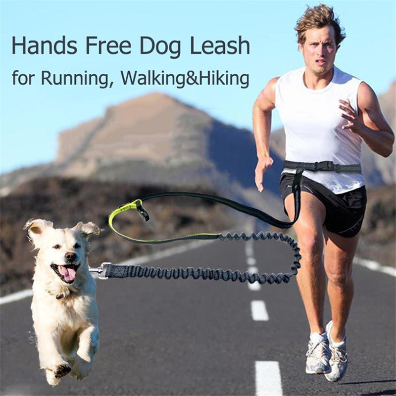 Elastic piombo Walking jogging Hands Free Dogs guinzaglio del cane per Media Esecuzione Vita regolabile riflettente Piccolo TOONS yh_pack