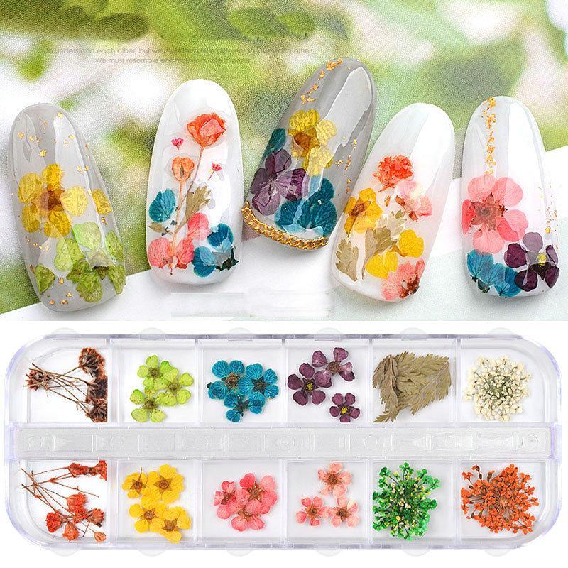 2Box / Borsa 12 Colori / Box Fiori Denti Nail Art Decorazioni 3D Natural Daisy Sole Flower Secco floreale Adesivi FAI DA TE Adesivi Manicure Estate Design Nail Salon