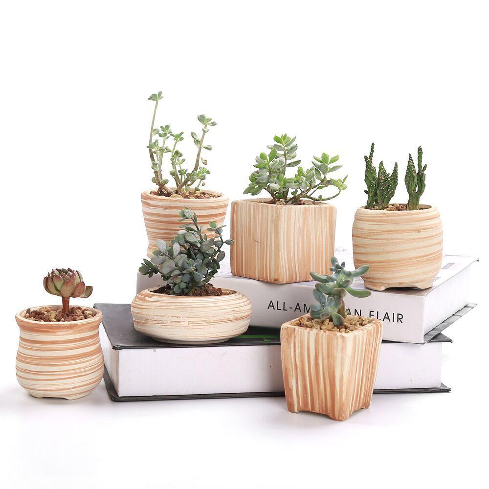 SUN-E 6 in Set 3 Inch Ceramic Wooden Pattern Succulent Plant Pot Cactus Plant Pot Flower Pot Container Planter Gift Idea Y200723