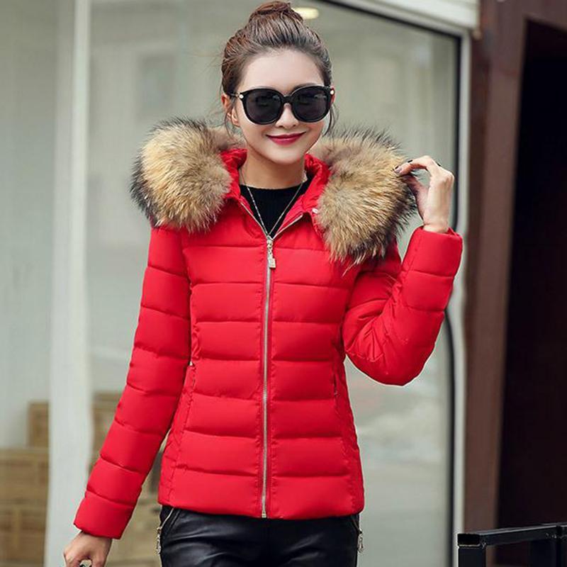 gruesa capa corta Parker damas de invierno de la chaqueta de la capa del invierno abajo Parker algodón M-6XL nueva de gran tamaño cuello de piel chaqueta delgada del ajuste