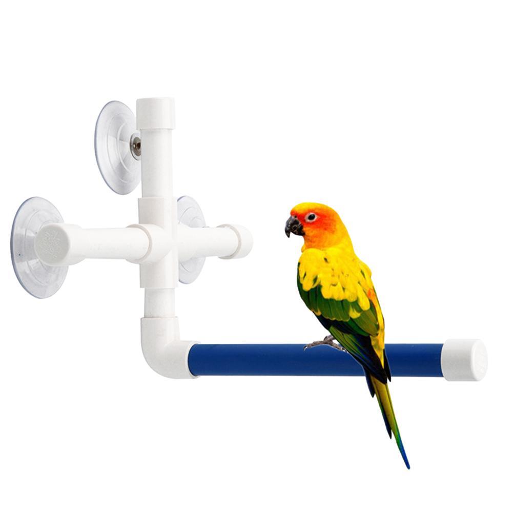 Oiseaux animaux Douche perchoirs Jouets pour les oiseaux de bain Plate-forme permanente rack mur Ventouse Parrot Budge Patte Broyage Support Jouet