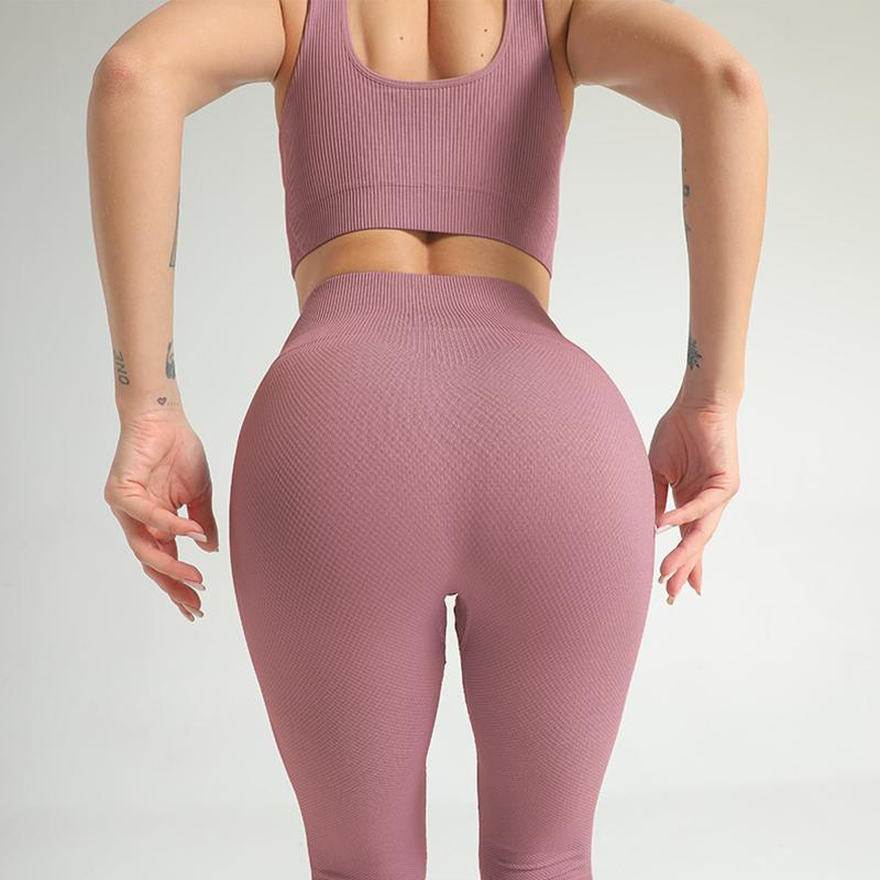 Yoga Outfits Seamless Set Women Fitness Clothing Sportswear Bra Sports Suits Gym Leggings Sport Suit