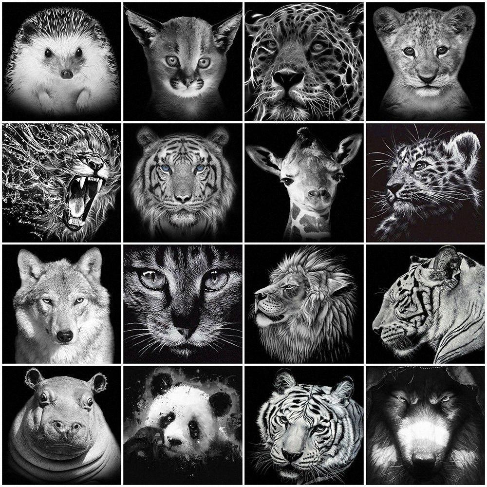Evershine Diamante Negro Blanco Pintura Animales diamante bordado completo la plaza redonda del león del tigre del Rhinestone Fotos Decoración Y4yw #