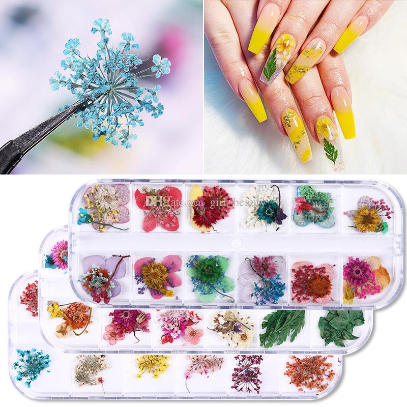 Wholesale Nail Dried Flower Real Floral 3D Nail Art Decorations Gel Polish Natural Floral Sticker Slider DIY Design Accessories Nail Tips