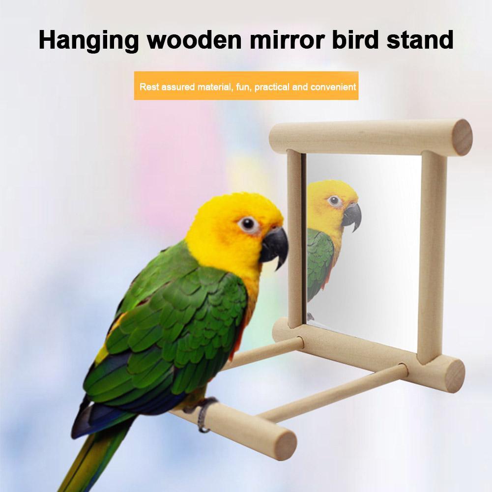 Ficticio del pájaro del juguete oscilación Soporte de madera Conures cacatúas Para loro Con Espejo