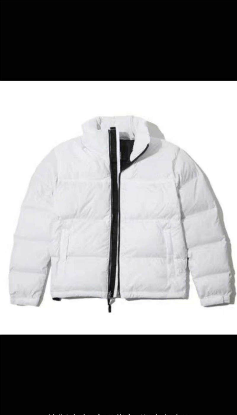Erkek ceketler Aşağı Erkekler Yeni Spor Ceket Kış Erkek Moda WINDBREAKER Spor Coats Erkek Sportwears Yüksek Kalite M-2XL