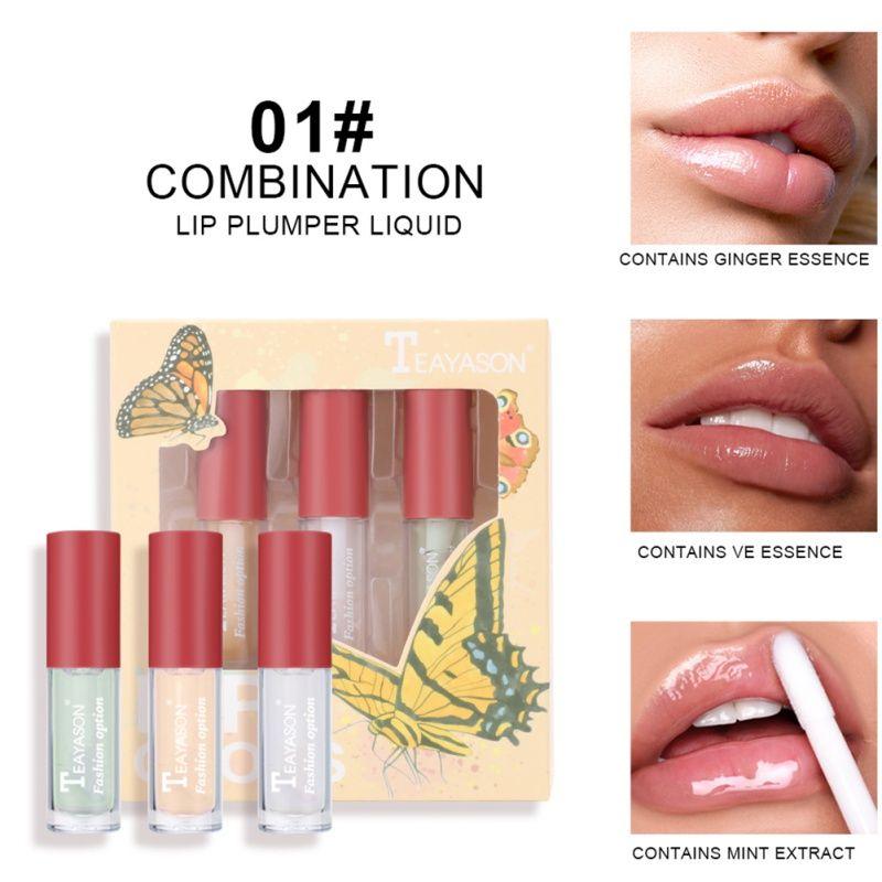New 3 pcs/set Lip Gloss Flavoring Oil Lipstick Clear Lip Gloss Polarized Clear Blusher Highlight Set Kit