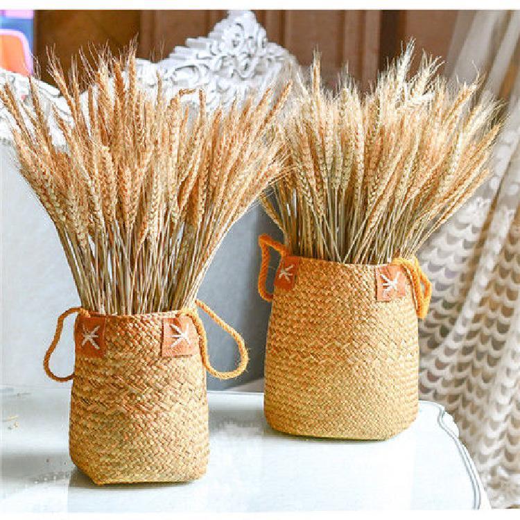 100шт / серия Real пшеницы уха цветок Природные сушеные цветы для свадьбы Украшение DIY Craft Scrapbook Home Decor Пшеничный Букет